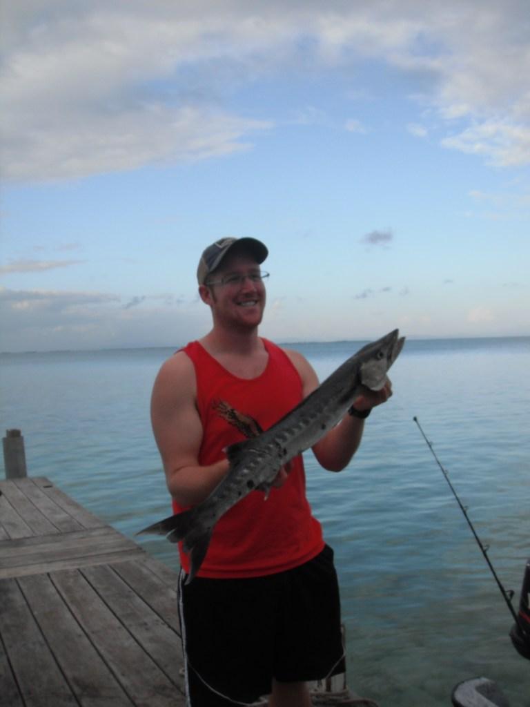 Andrew's barracuda