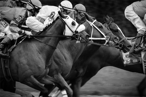 2016 Rachel Alexandra Stakes