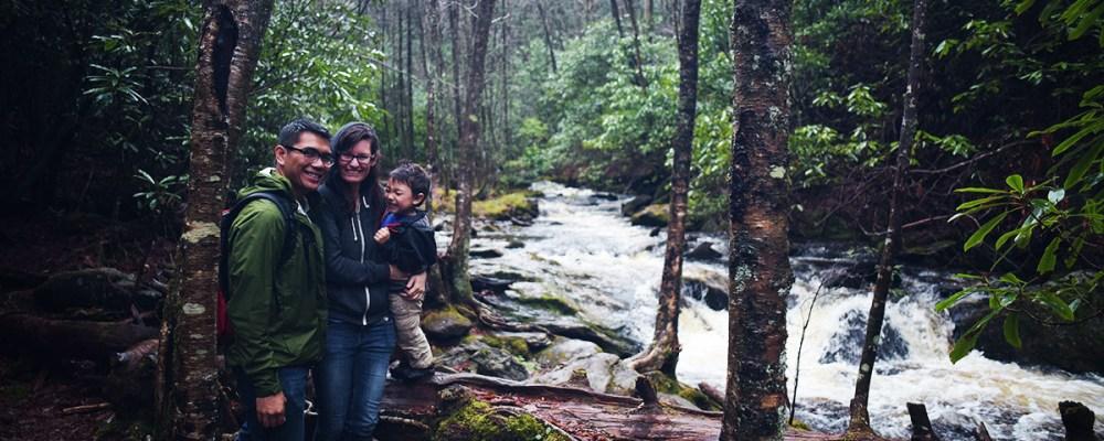 Nantahala Forest, North Carolina, Cabins, Woods, Camping, Hiking