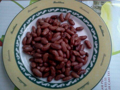 wpid IMG198 Kacang Jogo Kacang Merah Kaya Manfaat