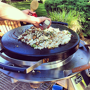 Evo Recipe Fried Rice