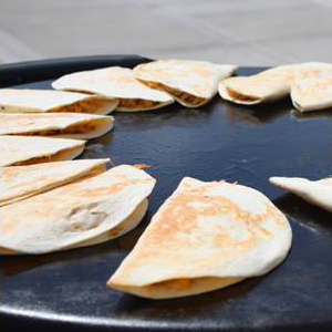 Evo Recipe Quesadillas