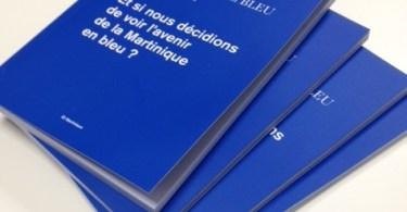 CONTACT ENTREPRISES livre bleu Madinmag Martinique