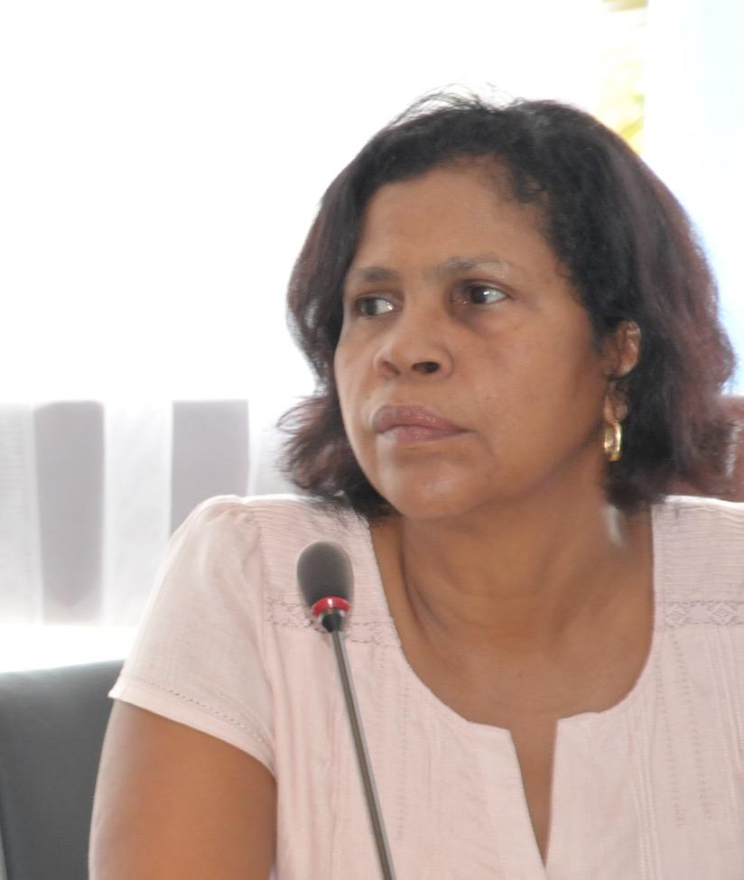 CESER : énergie, la Guyane à l'horizon 2040