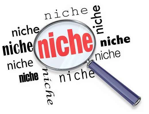 Top-niches-FILEminimizer.jpg.pagespeed.ce.q3TUYq0TWA