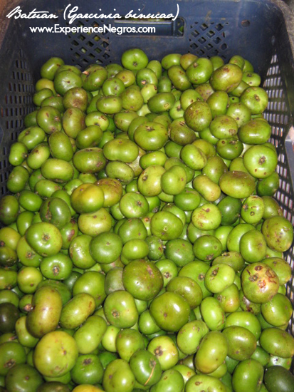 batuan fruits