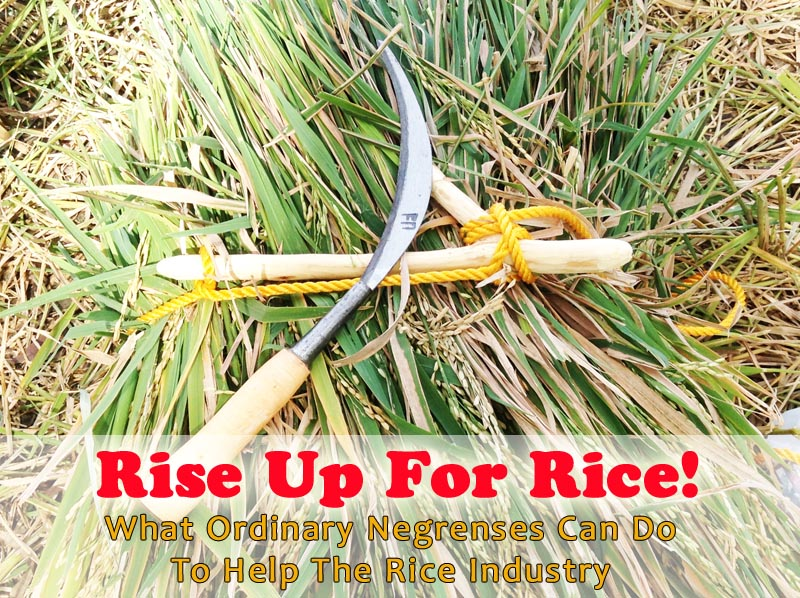 rise up for rice negrenses