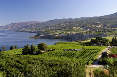 Art Waves Okanagan – Winery Experience