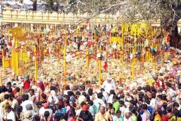 Sammakka Saralamma Medaram Jathara Photos