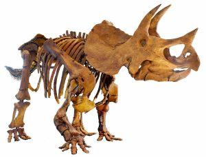 dinosaur extinction 2