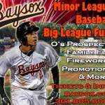 Celebrate Dad with the Baysox on June 15th
