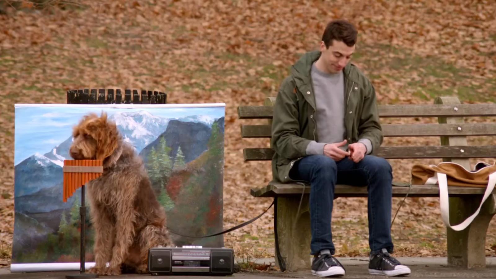 Ein Hund und seine Panflöte