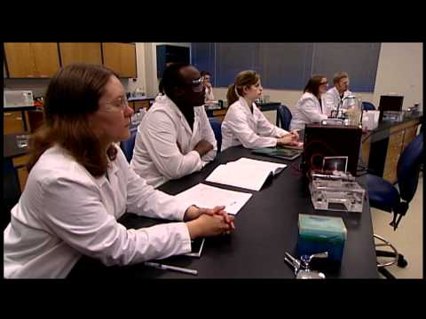 What Does a Biotechnology Course Look Like?