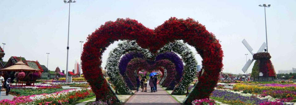 Miracle Garden din Dubai – minunea din deșert (galerie foto)