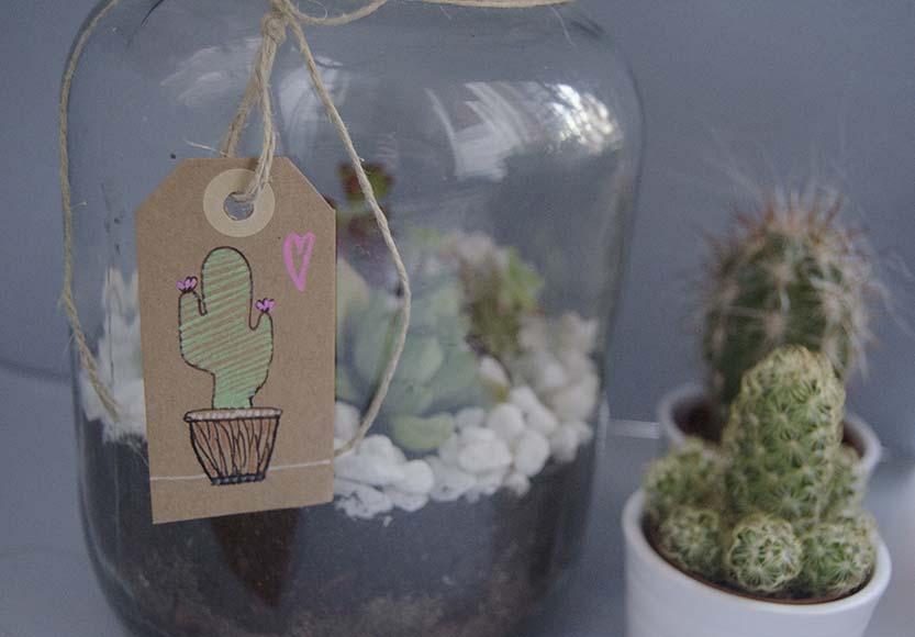 terrario cactus (6)