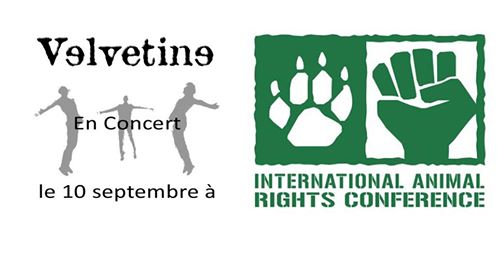 velvetine-animal-rights-conference