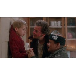 Small Crop Of Home Alone 2 Cast