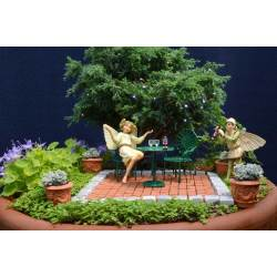 Affordable Fairygardenatnight Fairy Garden Ideas You Can Use From Our Experts Fairy Gardeness Fairy Garden Store