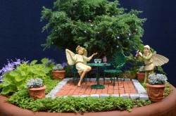 Small Of The Fairy Gardens