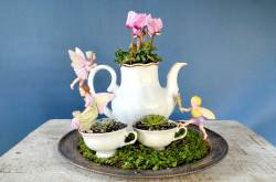 Small Of Miniature Garden Ideas