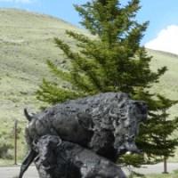 Art Museum in Jackson Hole, Wyoming