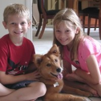 Fannie the 3-Legged Dog Finds Her Forever Pack Family