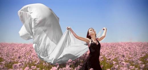 field-flowers-girl-wind-freedom