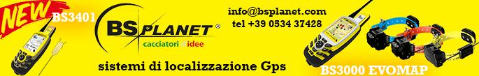 banner falconeria.org