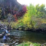 Fall is here!!!!! flyfishing utah flyfish orvis trout rivers utahflyfishing