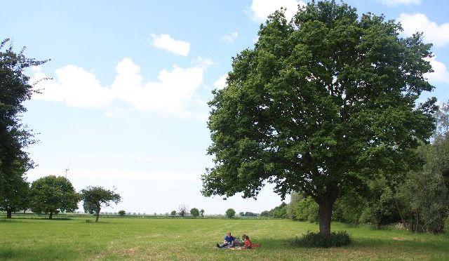 deutschland-picknick-lauenhagen-schaumburg