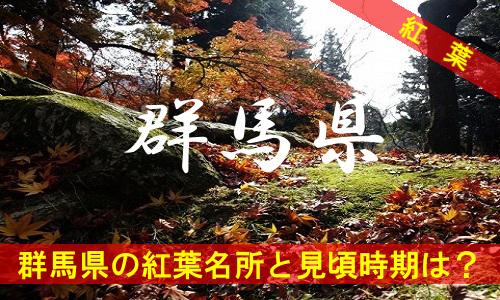 kouyou-gu-2336