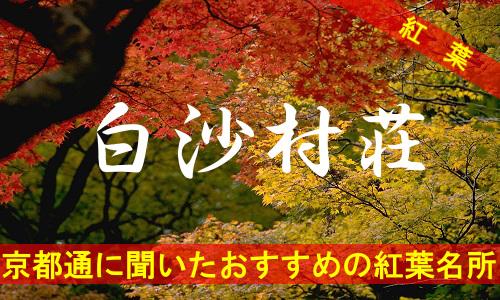 kouyou-kyouto-hakusan-3885