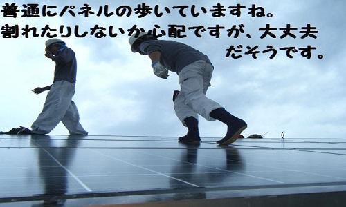 taiyoukou-10-3813-6