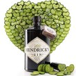 hendricks-pepino-corazon