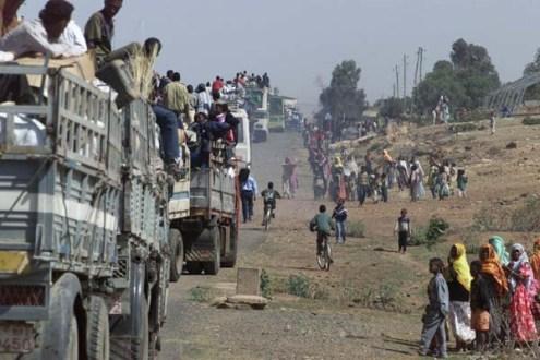 ERI-20010519-SENAFE, ERITREA: Onder luid gejuich van achtergebleven bewoners keerden zaterdag de eerste vluchtelingen, na een verblijf in het vluchtelingenkamp Harena in Eritrea, terug naar hun dorpen in en rond Senafe. Senafe ligt in de tijdelijke veiligheidszone ,die door ruim 1100 Nederlandse militairen wordt gecontroleerd. In een colonne van ruim 30 trucks en bussen waren dit de eerste 500 van de 20.000 vluchtelingen uit het kamp die in de regio rond Senafe worden terug verwacht. ANP FOTO/SJOERD HILCKMANN-KON. MARINE