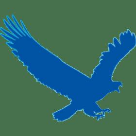البرنامج المجانى للتحميل من الإنترنت   EagleGet v.2.0.2.8 Stable