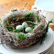 Bird Nest Spring Handmade