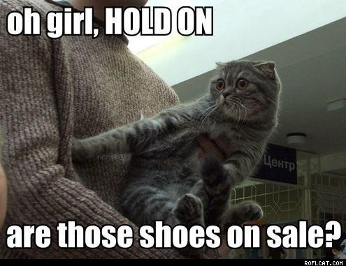 Oh_girl__HOLD_ON_are_those_shoes_on_sale_