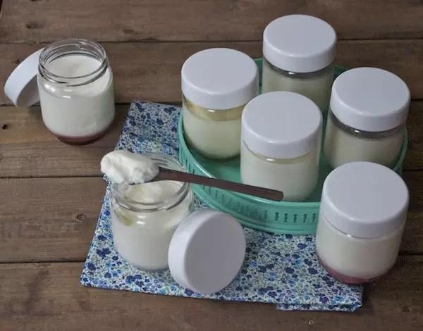 faire yaourt avec petit lait