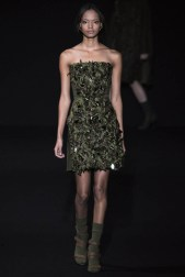Alberta Ferretti Fall/Winter 2014 | Milan Fashion Week