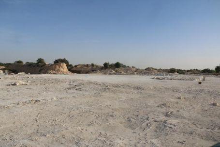 عدد من أهالي صبراتة يحتجون على جرف غابة منتزه صبراتة 8
