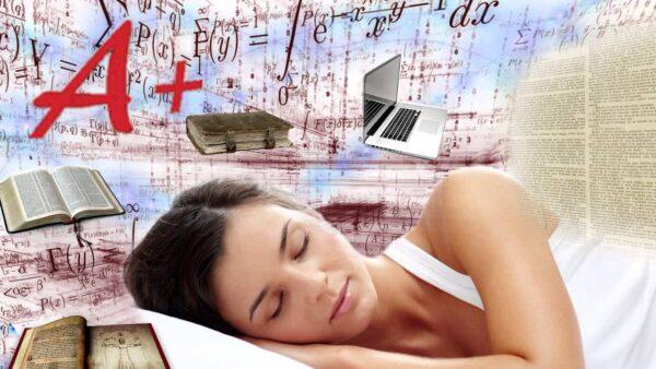 O que realmente acontece com o seu corpo quando você dorme 8 horas por dia O que realmente acontece com o seu corpo quando você dorme 8 horas por dia 1 43