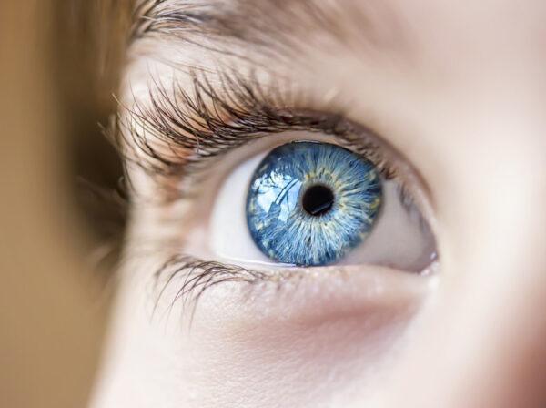 Todas as pessoas de olhos azuis estão interligadas por algo maior do que a semelhança física Todas as pessoas de olhos azuis estão interligadas por algo maior do que a semelhança física 1 55