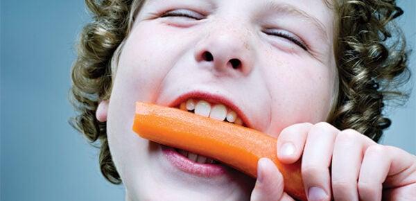 Qual é o caminho que os alimentos fazem dentro de nosso organismo? Qual é o caminho que os alimentos fazem dentro de nosso organismo? 2 117