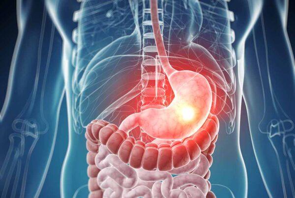Qual é o caminho que os alimentos fazem dentro de nosso organismo? Qual é o caminho que os alimentos fazem dentro de nosso organismo? 3 79