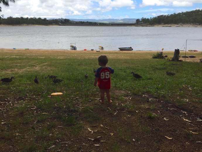 Kipp and his duck friends