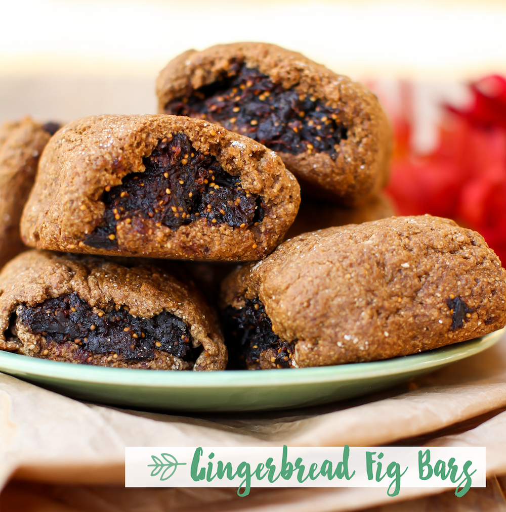 Gingerbread Fig Bars - FeastingonFruit.com