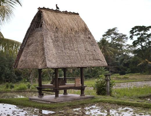 Chedi Rice Bale 2