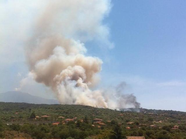 allarme incendi federconsumatori sicilia