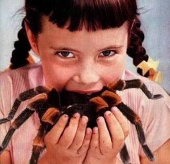 GirlEatingSpider